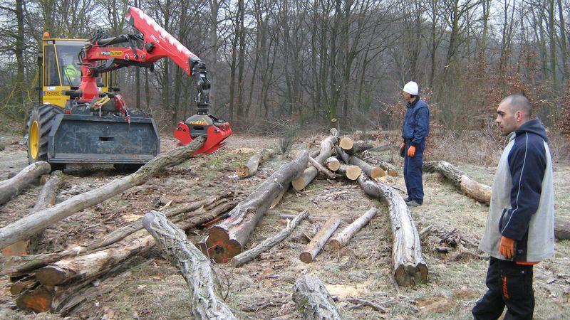 CIGL-Hesperange-environnement