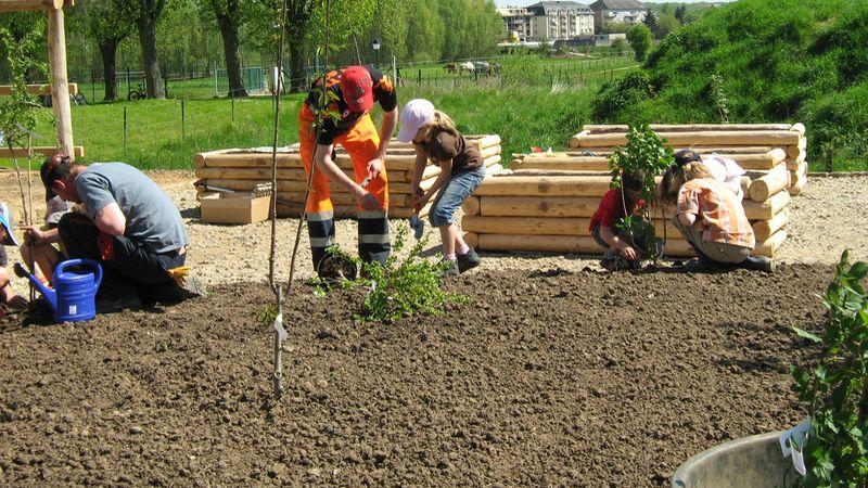 CIGL-Hesperange-jardin-solidaire-kalendula