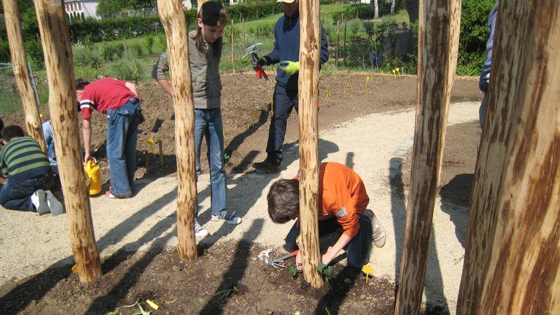 CIGL-Hesperange-kalendula-jardin-solidaire