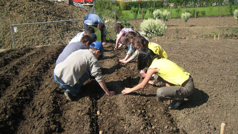 CIGL-Kalendula-jardin-solidaire